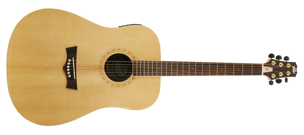Peavey...+Guitar%3F