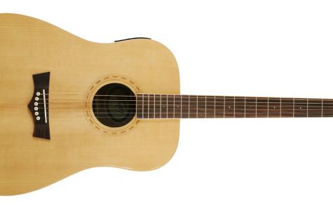 Peavey… Guitar?