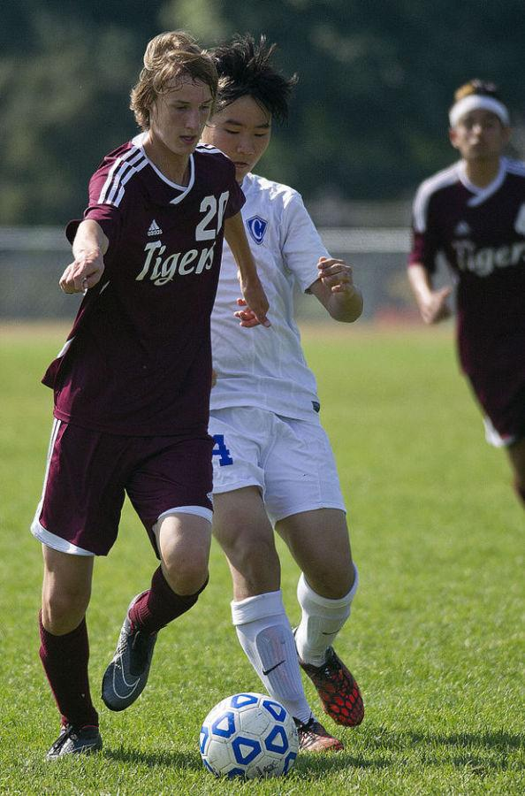 Boys Soccer Ties Stewartville