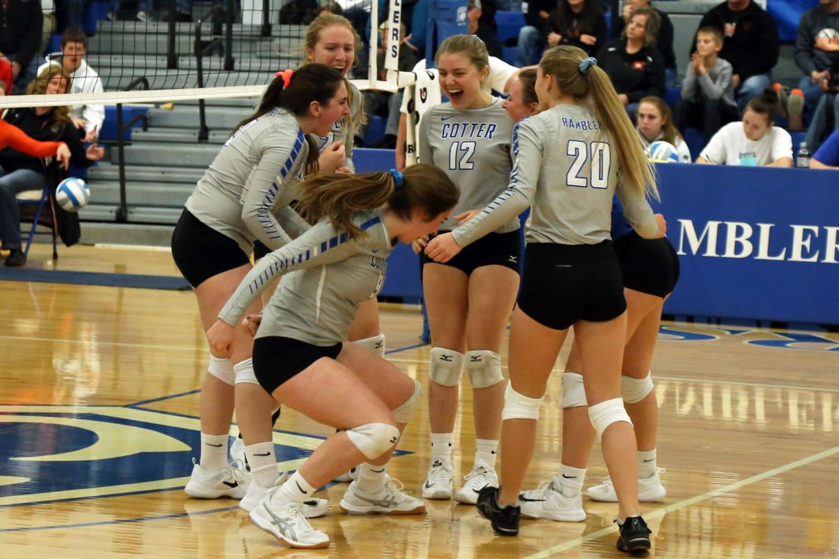Volleyball looks to veterans for success