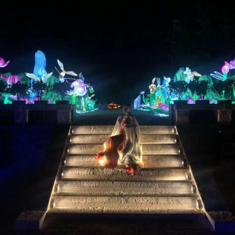 A broader view of the lantern show.
