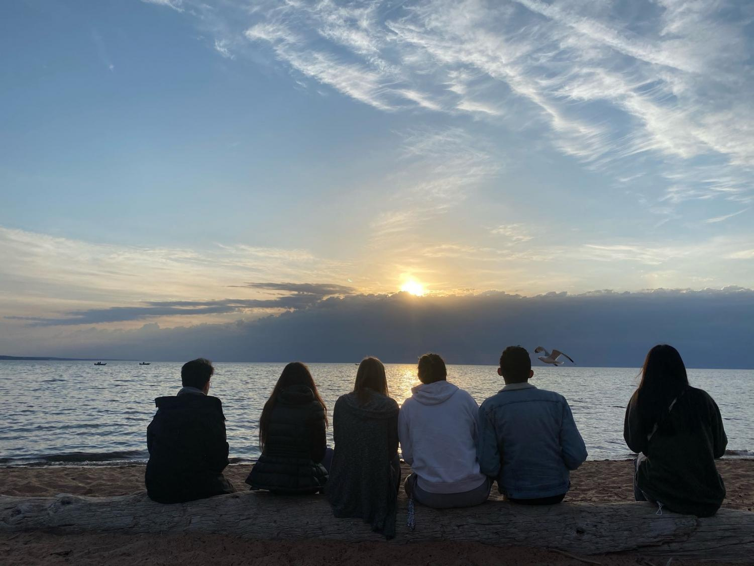 The students from the dorm in Duluth, with sun, beach, peaceful water and a seagull