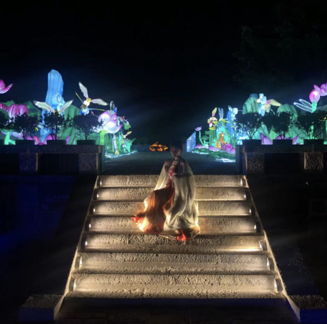 A broader view of the Lantern Show