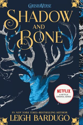 Shadow and Bone:  welcome to the Grishaverse
